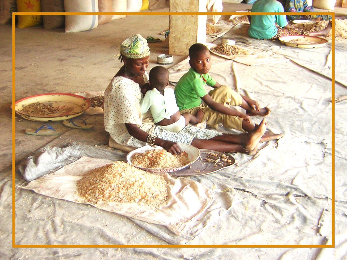 Cleaning Gum arabic Niger