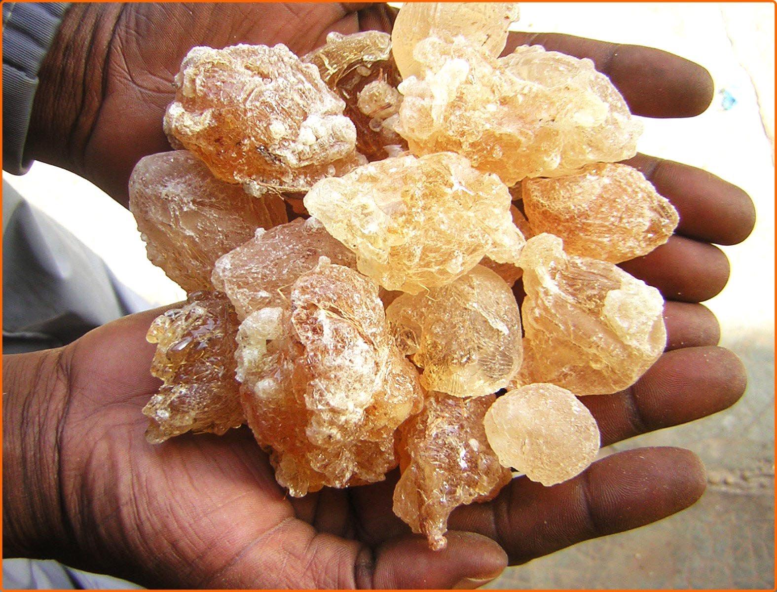 Gum arabic Niger