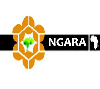 ngara-logo-icon
