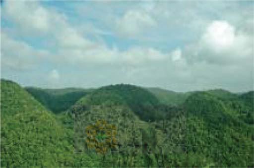 news-Jamaica-funding-ngara