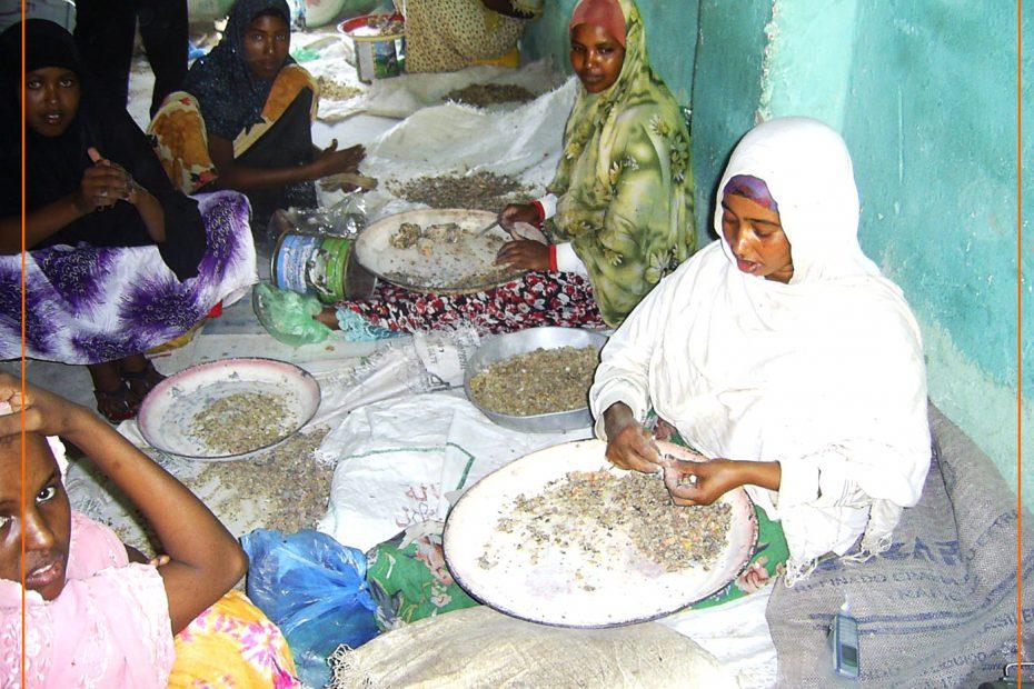 Women Cleaning Gum Resins_SOMALILAND